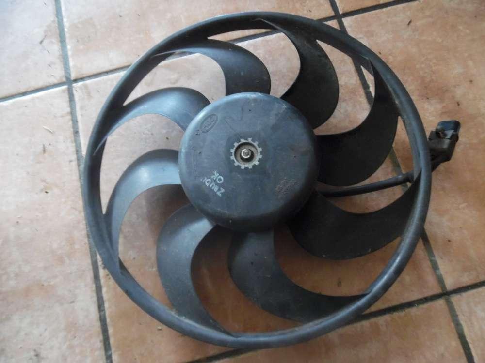 Hyundai Santa Fe Bj:2004 Lüftermotor Klima 4569632