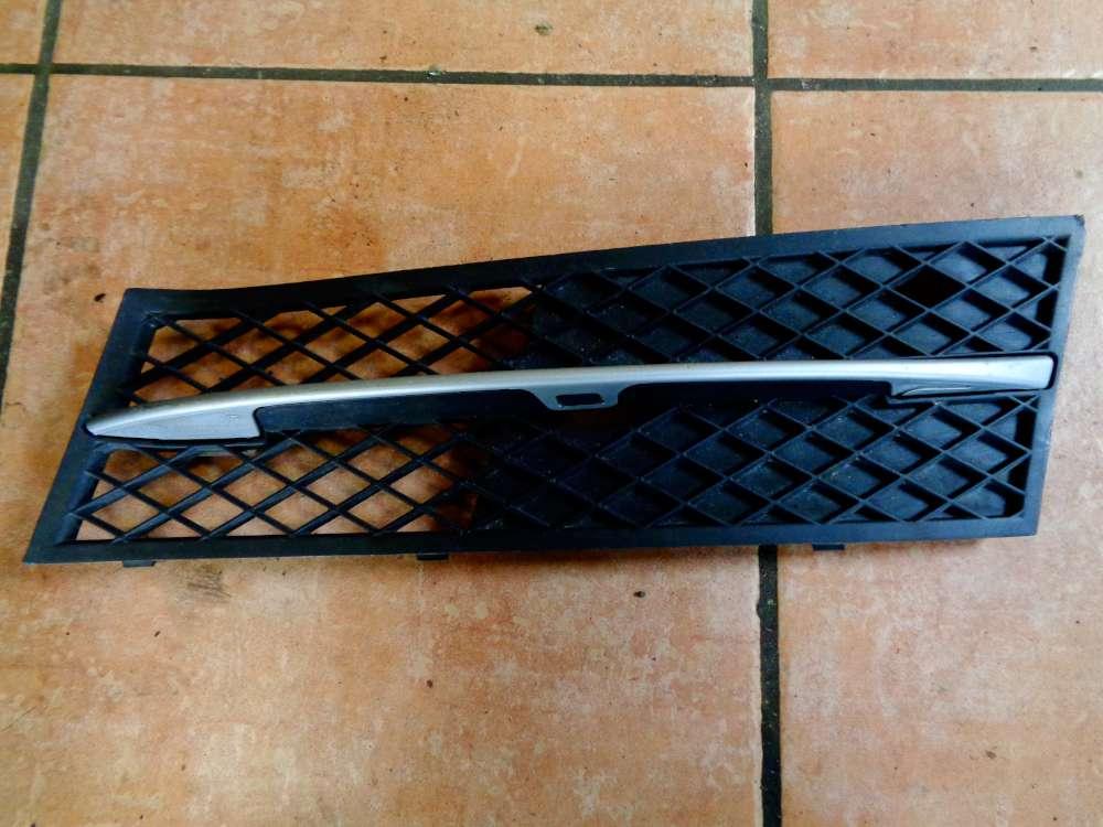 BMW 5er F10 F11 Stoßstange Gitter Vorne Links 51117200699-09