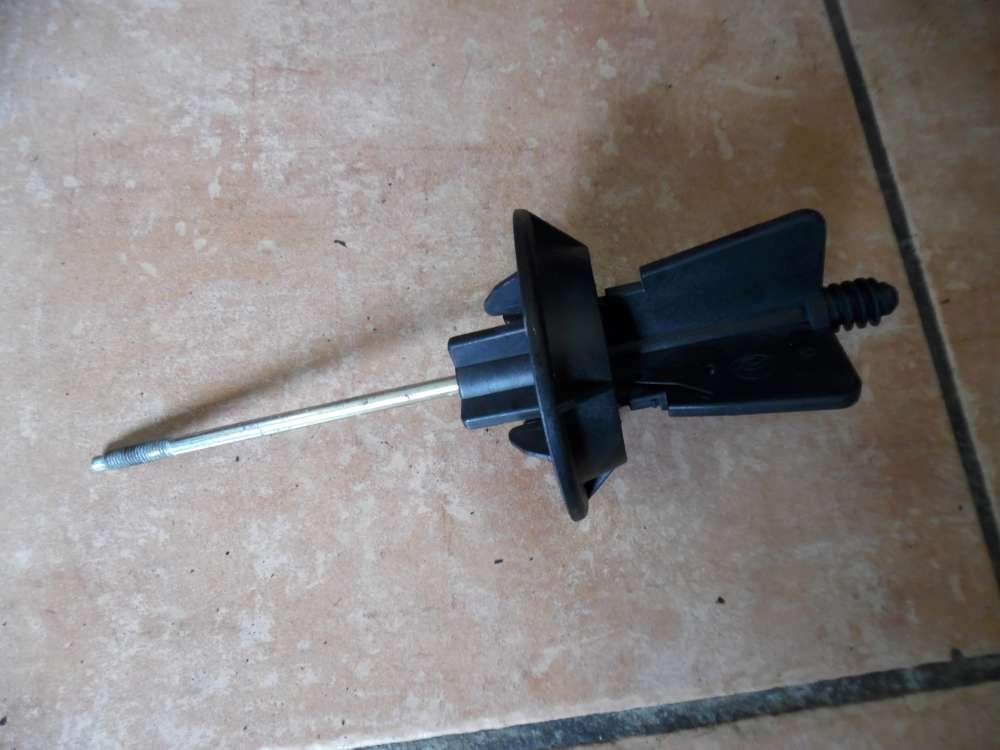 Ford Focus Halteplatte Reserverad 2M511402AA