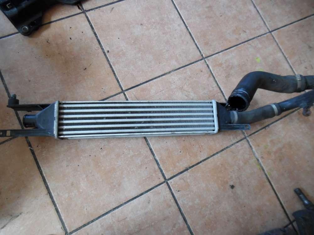 Fiat Punto 199 Ladeluftkühler mit Schlauch 51836369