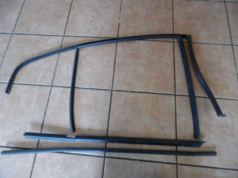 BMW 3er E46 Fensterführung Türgummi Türleiste Hinten Links 8194691